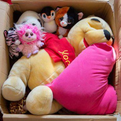 צעצועים בתוך קרטון